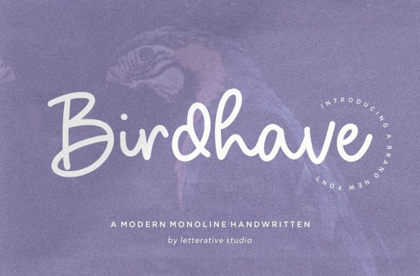 Birdhave-Font