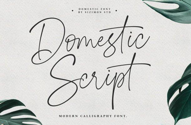 Domestic-Font