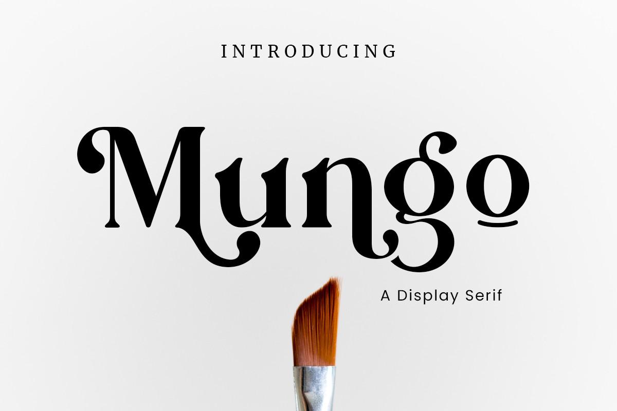 Mungo-Serif-Font
