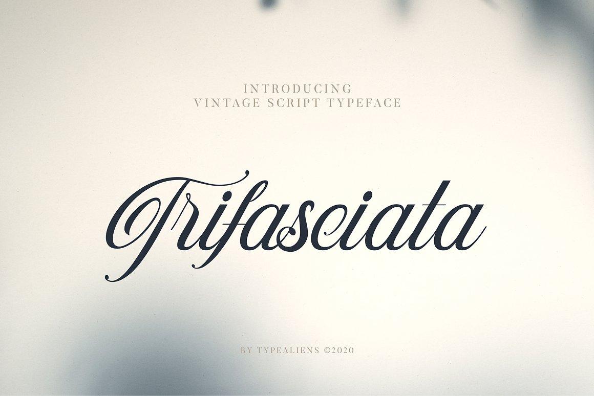 Trifasciata-Font-5
