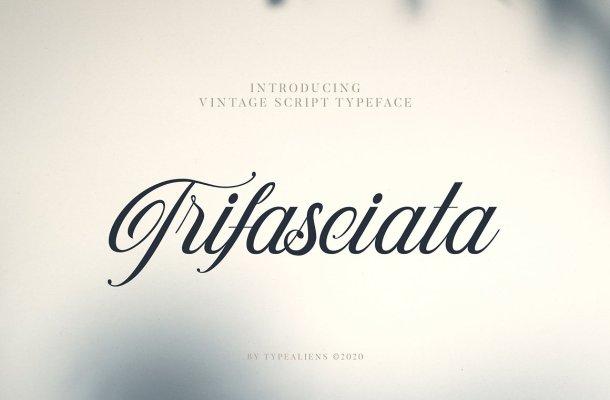 Trifasciata Font
