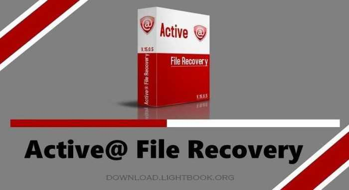 Download Active File Recovery Deleted Files after Format