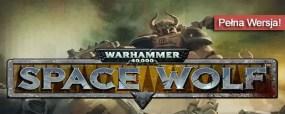 Warhammer 40000 Space Wolf steam