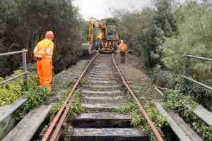 A large road-rail excavator is working on the stone beside the track on our Loop Line. A supervisor is directing the work from a safe distance, and a third volunteer is watching from the foreground. The track is overgrown and disused.