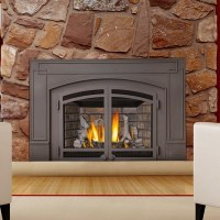 Decorative Fireplace Insert - Home Design