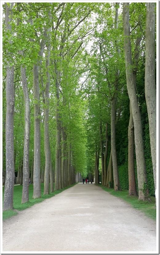 Versailles, France @DownshiftingPRO