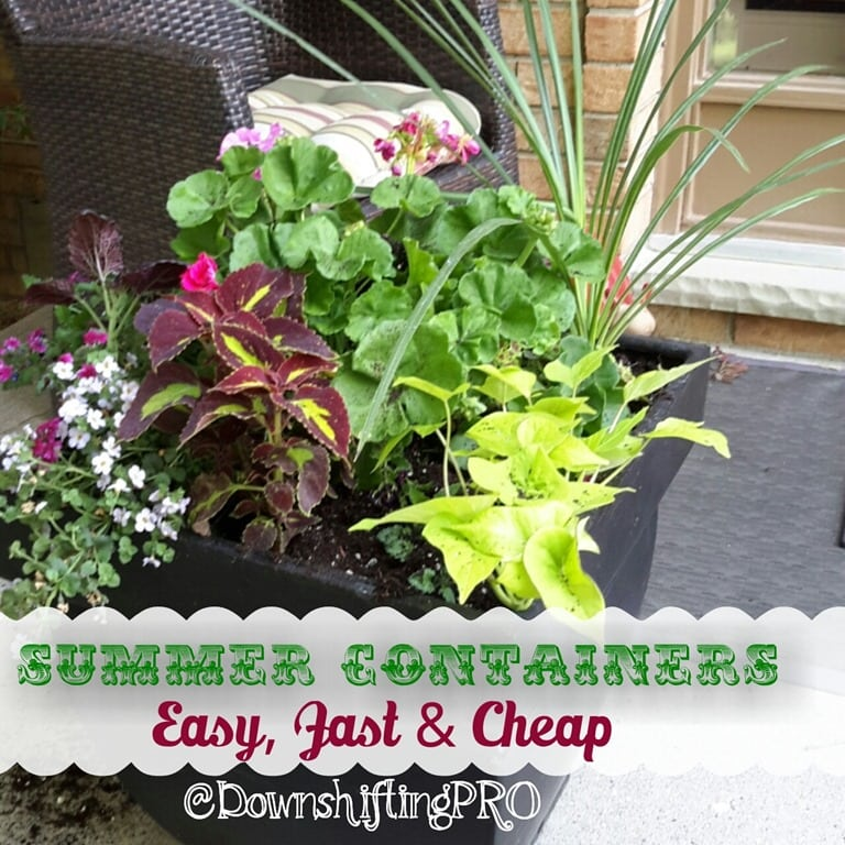 Fast, Easy And Cheap #Gardening With