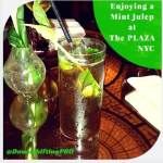 Iconic Hotels–Drinks at The Plaza in New York City– #Travel #USA
