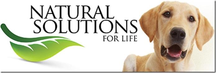Natural_Solution_Logo_1jpg