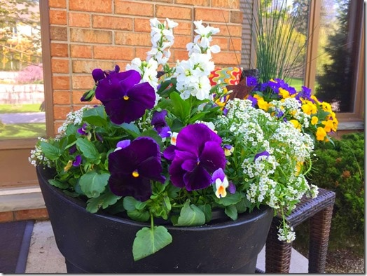 Planters-Summer Planters @DownshiftingPRO