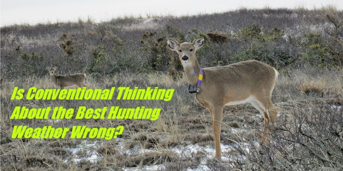 b9e7cefa260 Episode 051  The Science Behind Deer Movement and When to Hunt- Part 1 -  Down South Hunting