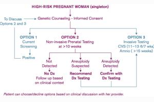 Verinata's Prenatal Testing Flow Chart: Unethical?
