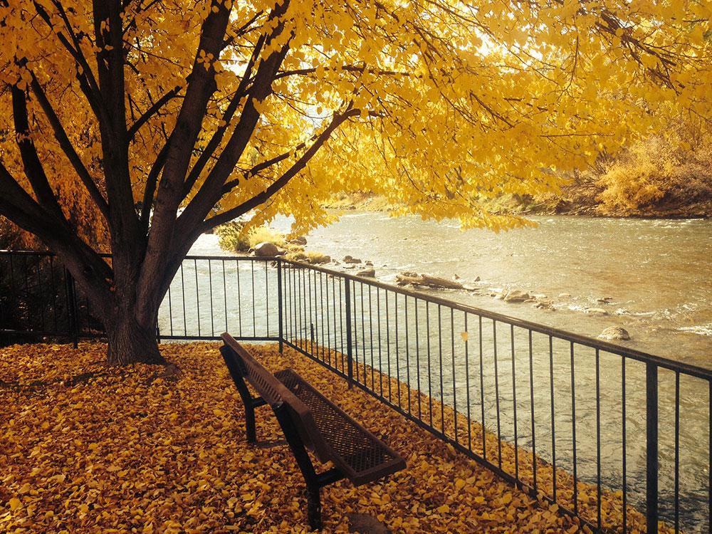 Fall In Colorado Wallpaper Durango Colorado Webcams