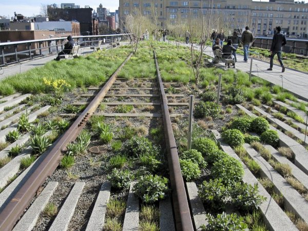 Enjoy Fall Events High Line - Downtown Magazine
