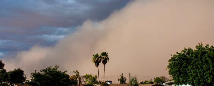 Cleaning Up Your Pool After A Haboob