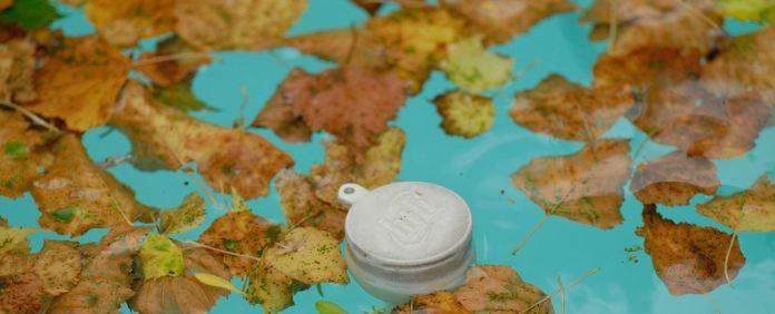 5 Fall Pool Maintenance Tips