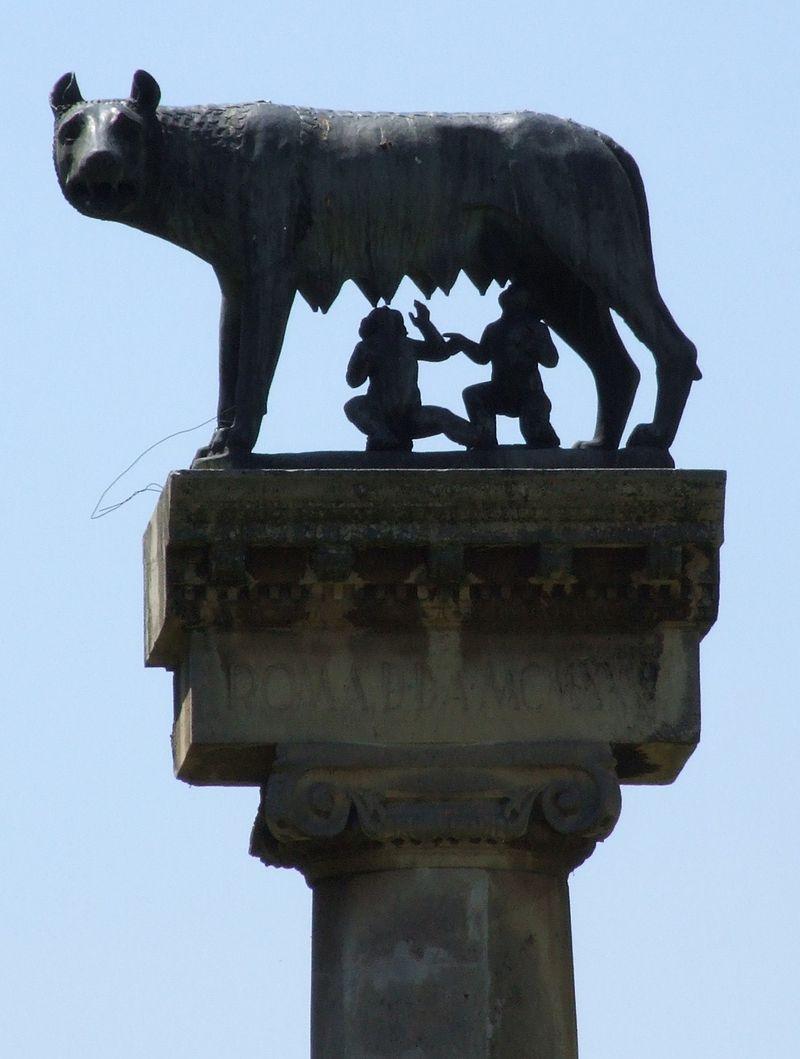 Imagini pentru statuia lupoaicei timișoara