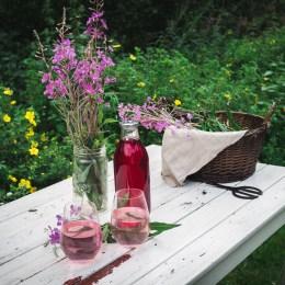 Fireweed Juice (Geitramssaft)