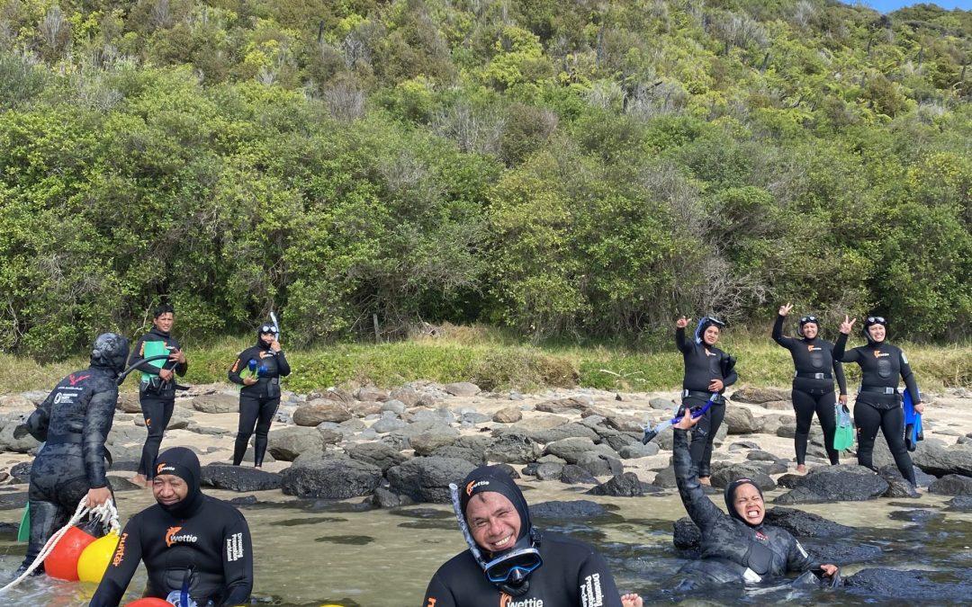 Diving Safety at Waitangi
