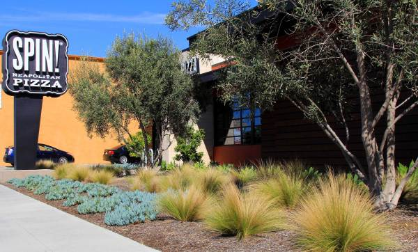 commercial landscaping dp environments