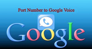 Port Number to Google Voice How to Do It