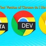what version of chrome do I have
