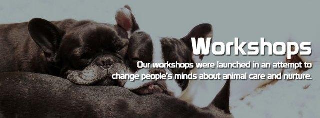 s1 - Workshops