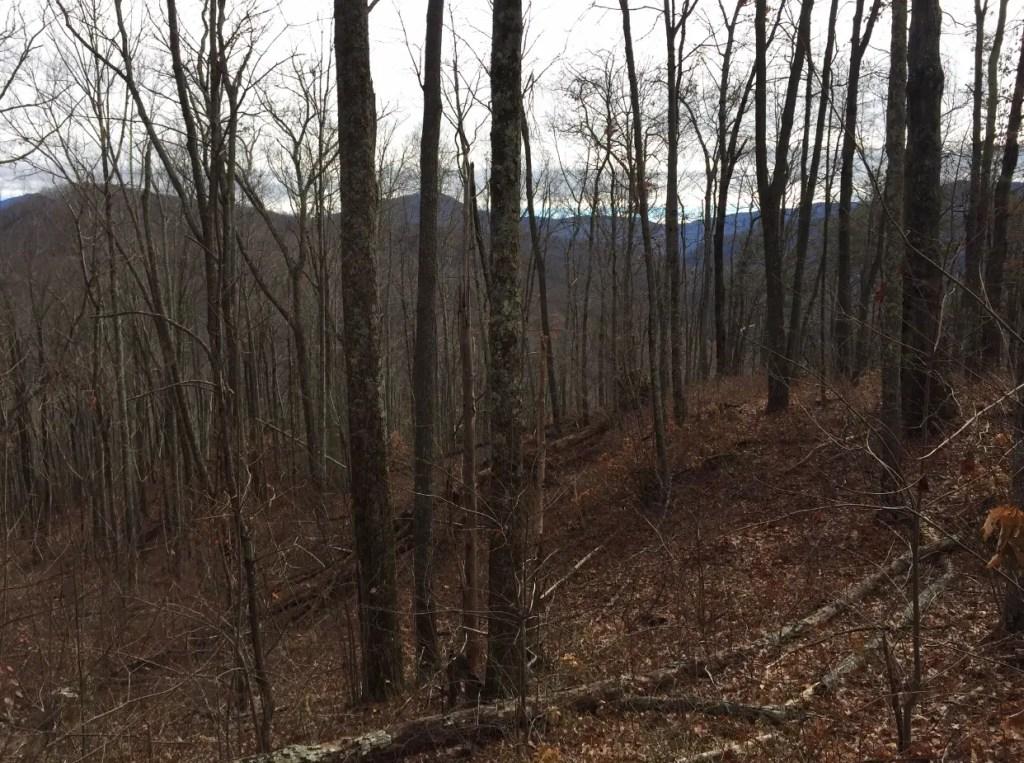 Smoky mountain hikes 3