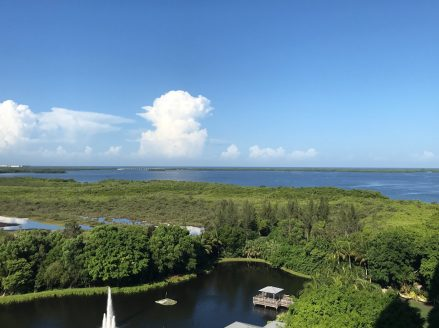 Hyatt Coconut Point View