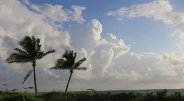 Fort Lauderdale roadtrip florida