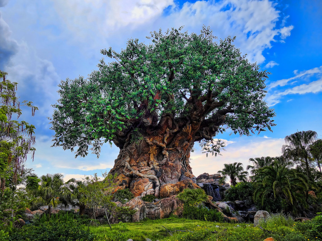 Animal Kingdom fastpass Tree of life