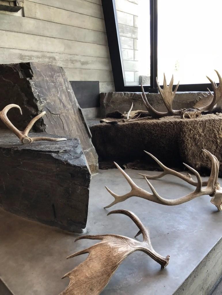 Moose Visitor Center