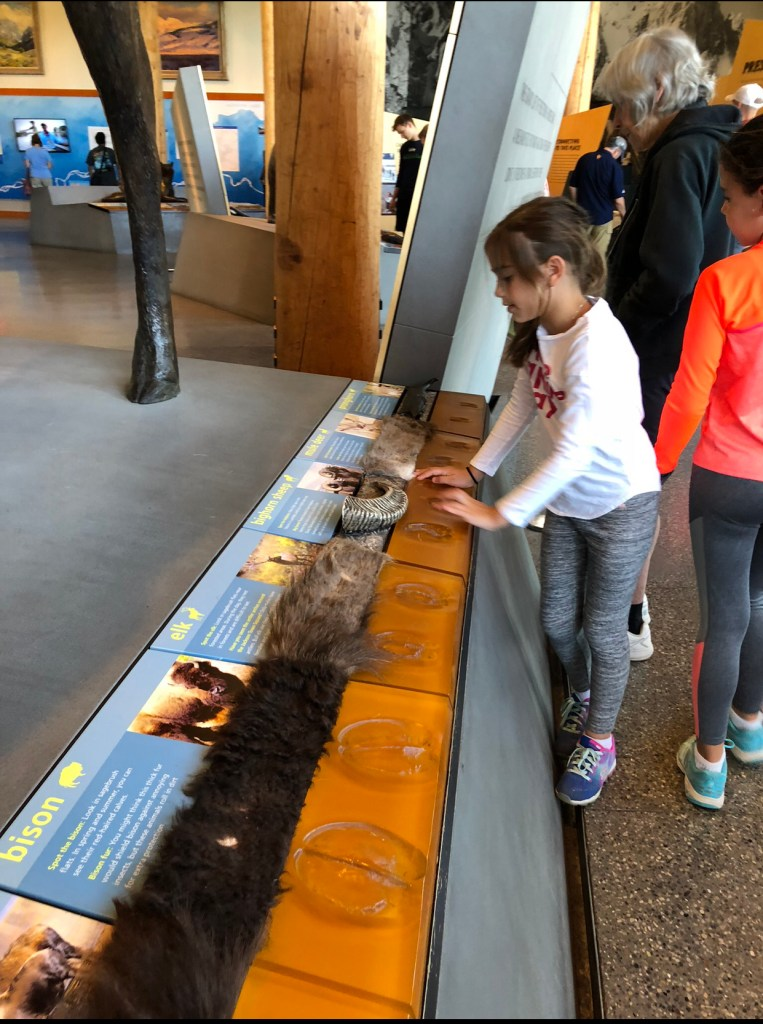 Moose Visitor Center 1