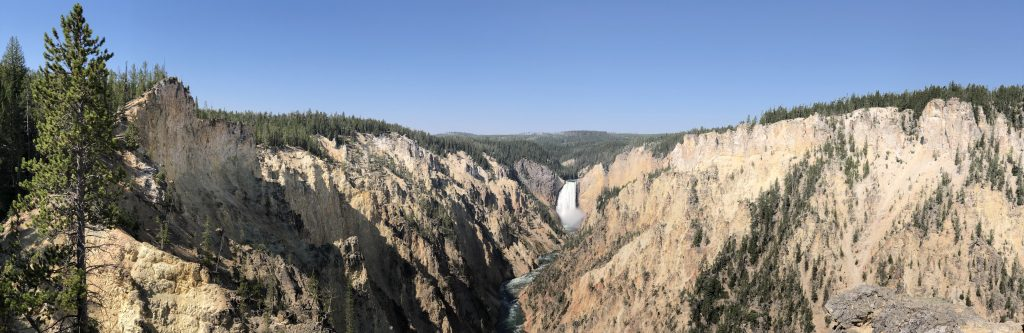 Grand Canyon of Yellowstone Pano