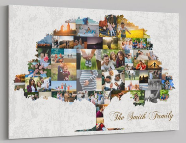 what to do with travel photos family tree