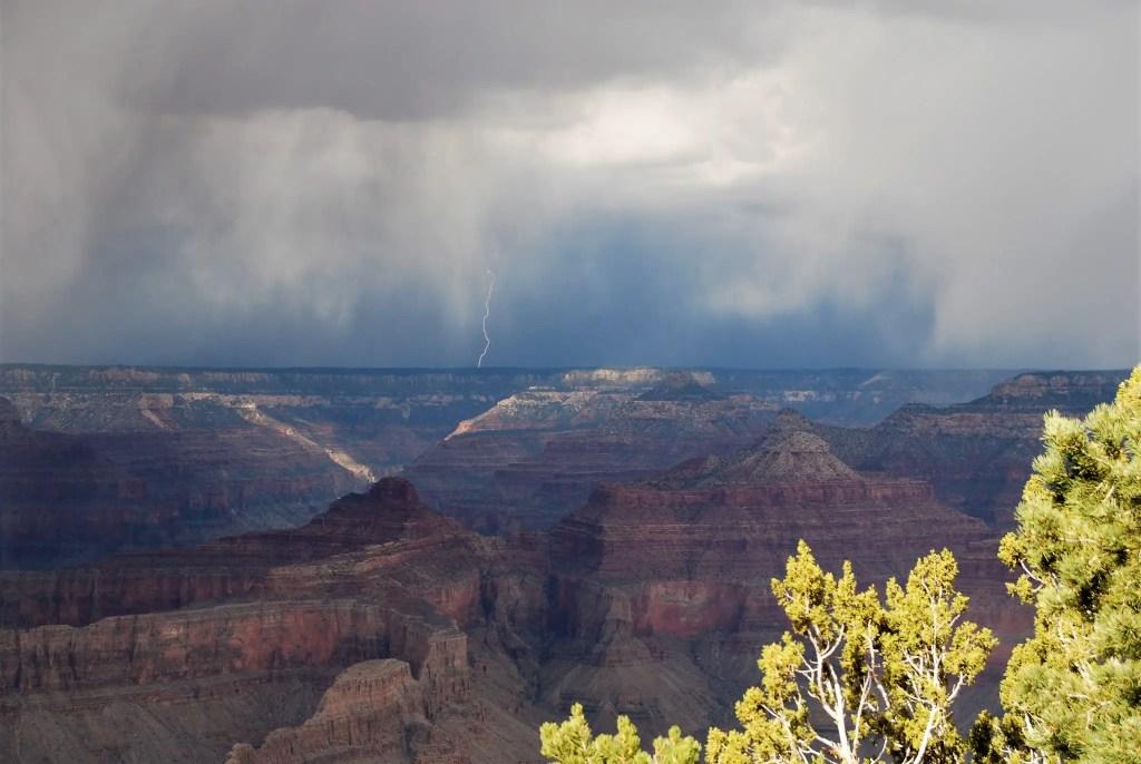 national park junior ranger grand canyon