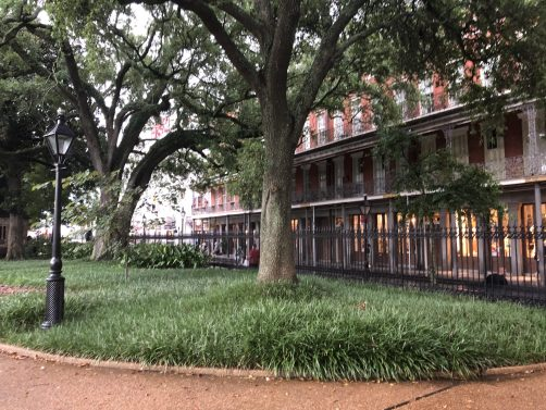 What to do in New Orleans with kids