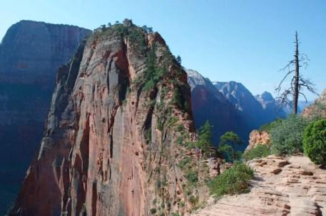 national parks junior ranger zion