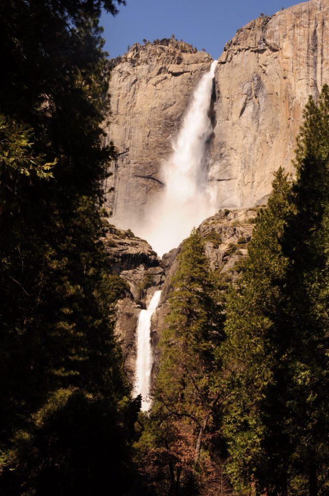 4th grade national parks pass Yosemite