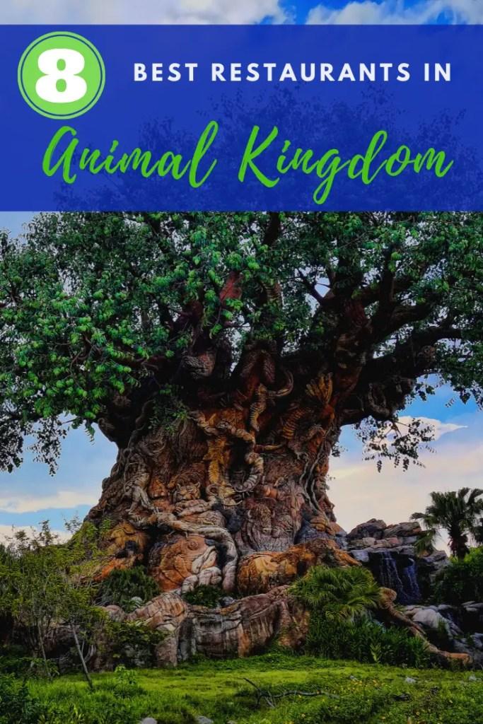 best restaurants in Animal Kingdom Pin