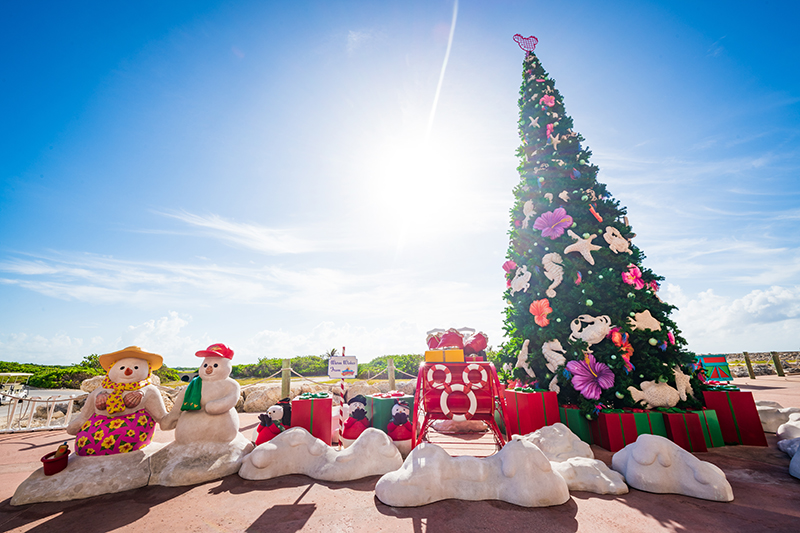 Castaway Cay Activities Christmas
