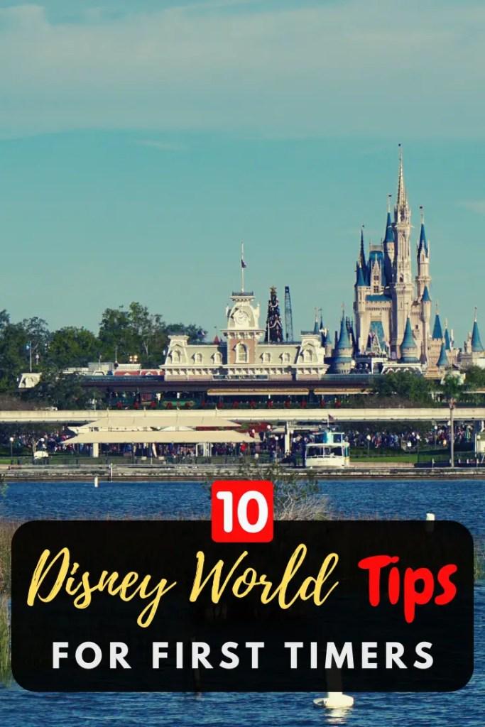 Disney World Tips Pin