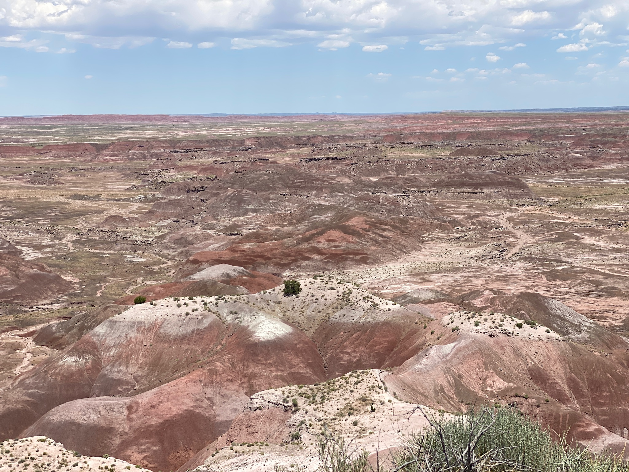 Petrified Forest National parks road trip