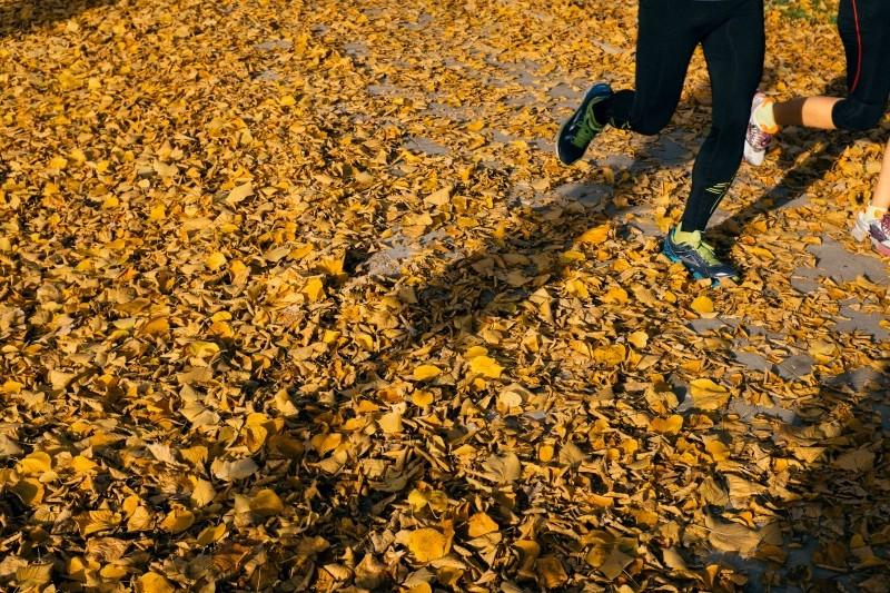 joggers-running-in-autumn-park