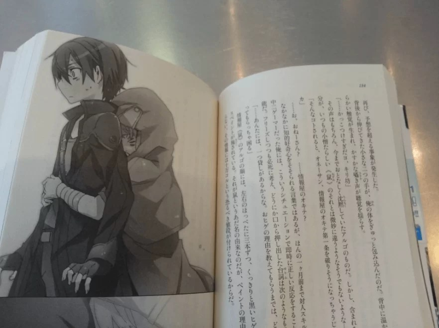 a chapter of Sword Art Online chapter