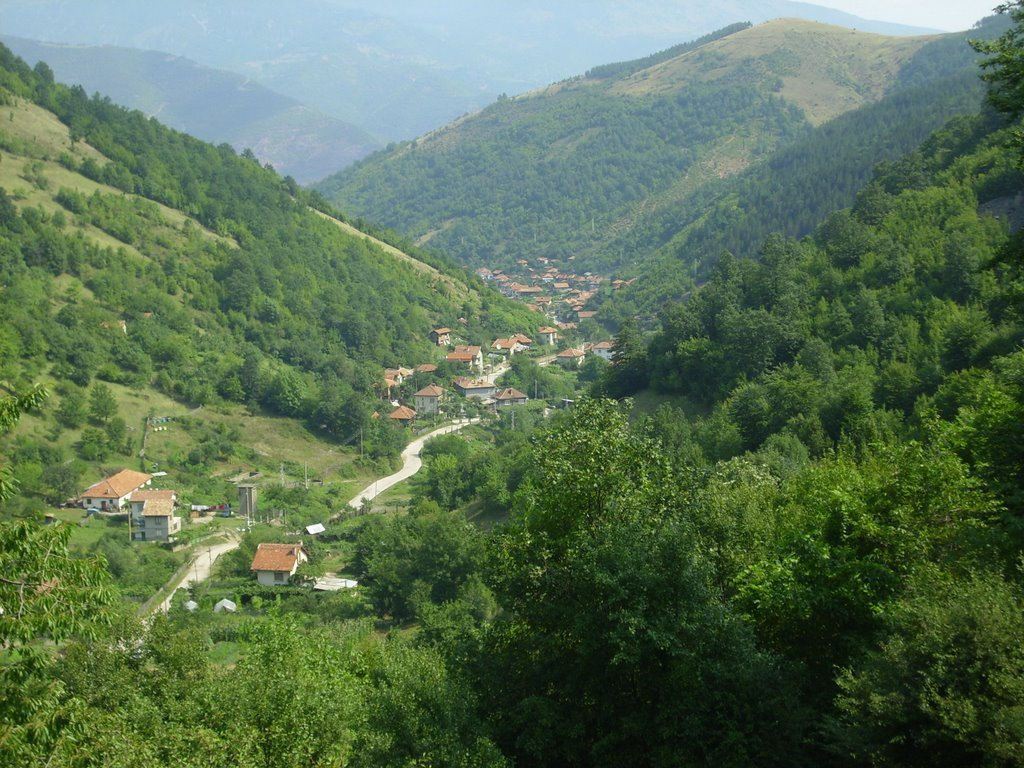 Блогът на Драгомир Драганов