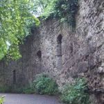 Ruine du château fort médiéval Drachenfels, Siebengebirge