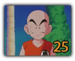 Kuririn (25)