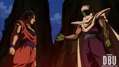 Gohan et Piccolo