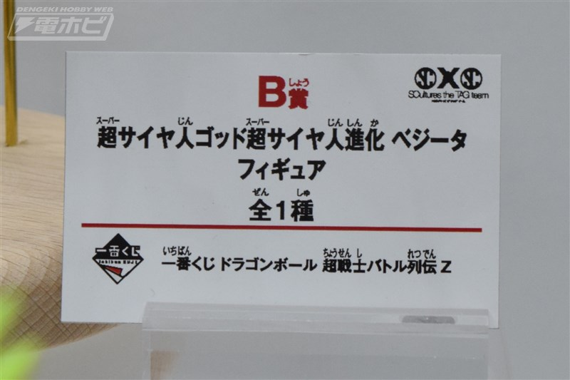 DSC_5574a